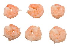 Boiled Peeled Shrimp Royalty Free Stock Photography