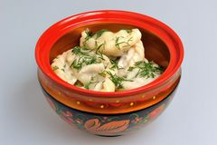 Boiled pelmeni in traditional painted russian wood Stock Images