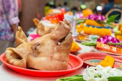 Boiled pig head in ritual sacrifice or votive offering according to Asian religion people beliefs. In Thai temple royalty free stock photos