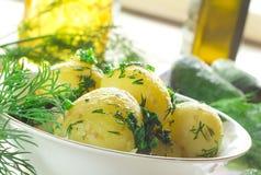 Boiled potato Stock Photography