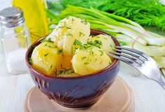 Boiled potato Stock Photos