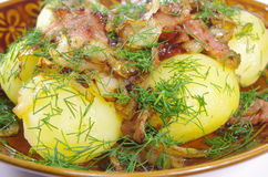 Boiled potato with fried bacon Stock Image