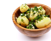 Boiled Potato with Greens Royalty Free Stock Images