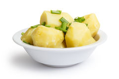 Boiled potato with onion in bowl Royalty Free Stock Images