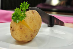 Boiled potato with some  parsley and knife Royalty Free Stock Images