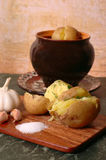 Boiled potatoes. Traditional russian table: Boiled potatoes with garlic and salt Stock Photos