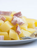 Boiled potatoes with bacon Royalty Free Stock Photo