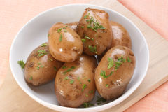 Boiled potatoes with chopped parsley Stock Photos