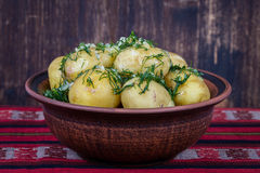 Boiled potatoes with dill and garlic in butter on a plate Royalty Free Stock Photography