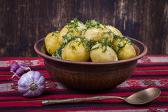Boiled potatoes with dill and garlic in butter on a plate Royalty Free Stock Image