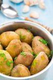 Boiled potatoes with fresh dill Royalty Free Stock Photo