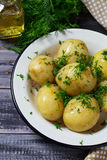 Boiled potatoes with fresh dill Royalty Free Stock Photography