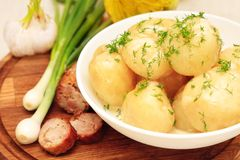Boiled potatoes with fresh herbs Royalty Free Stock Photo