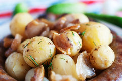 Boiled potatoes with fried bacon Royalty Free Stock Images