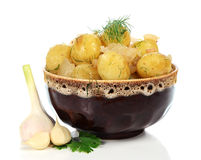 Boiled potatoes in the plate Royalty Free Stock Photography