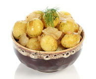 Boiled potatoes in the plate Stock Photography