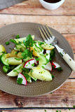 Boiled potatoes with radish and greens Royalty Free Stock Photos