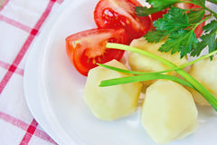 Boiled potatoes, tomatoes, green onions and parsley on a plate. Fresh lunch: boiled potatoes, tomatoes, green onions and parsley on a plate Stock Images