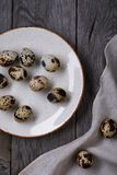 Boiled quail eggs on a plate. Top view Royalty Free Stock Images