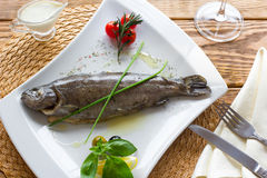 The  boiled rainbow trout with fresh vegetables Royalty Free Stock Photo