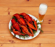 Boiled red crawfish on a white plate with green fennel on a wooden background. Stock Photo