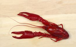 Boiled red crawfish on wood Royalty Free Stock Photos
