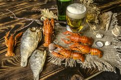 Boiled red crayfish with dried salted fish,glass with beer and a bottle of beer. On canvas lying on dark wooden boards Royalty Free Stock Image