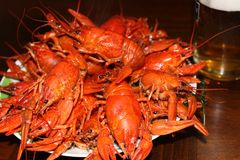 Boiled red crayfish stock photo