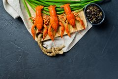 Boiled red crayfish on a wooden chopping Board. Black background, top view, space for text. royalty free stock photography