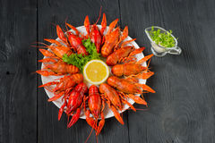Boiled red crayfishes on a white dish, top view Royalty Free Stock Images