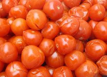Boiled red tomatoes Royalty Free Stock Photo