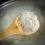 Boiled rice Royalty Free Stock Photography