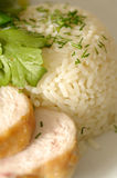 Boiled rice and chicken fillet Royalty Free Stock Photo