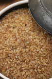 Boiled Rice or Parboiled rice Royalty Free Stock Photography