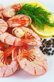 Boiled royal Argentine shrimp with lemon and dill  on a plate Royalty Free Stock Photo