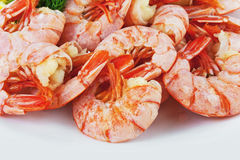 Boiled royal Argentine shrimp on a plate Royalty Free Stock Photos