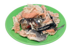 Boiled salmon lie on a green ceramic plate Royalty Free Stock Photography