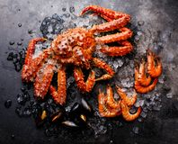 Boiled Seafood on ice - King Crab, Prawn Shrimp, Clams. Boiled Seafood on ice - King Crab, Prawn Shrimp, Mussels Clams on dark background stock photography