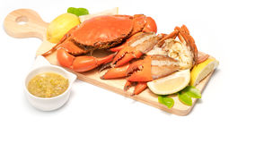 Boiled Serrated mud crab  on a wooden plate Stock Photography