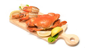 Boiled Serrated mud crab  on a wooden plate Royalty Free Stock Images