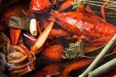Boiled shellfish in pan Royalty Free Stock Image