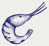Boiled shrimp. Illustration boiled shrimp. Doodle style Stock Photos