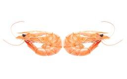 Boiled shrimp in China Stock Photo