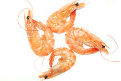 Boiled shrimp in China Stock Images