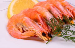 Boiled shrimp Royalty Free Stock Photography