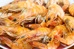 Boiled Shrimp on dish Stock Photos