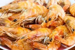 Boiled Shrimp on dish Stock Photos