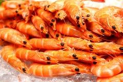 Boiled shrimp on ice Stock Photos