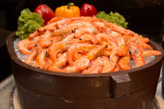 Boiled shrimp on ice Stock Image