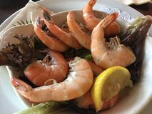Boiled Shrimp Plate Royalty Free Stock Photography